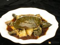 黄沙鳖有什么功效?吃黄沙鳖(甲鱼)可以补脑